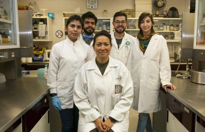 Investigadores del IPNM eliminan al 100% el virus del papiloma humano en 29 mujeres