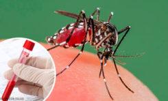 Suman 27 casos de dengue en el estado de Chihuahua