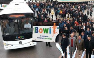 Inician operaciones 25 camiones nuevos 'Bowi' para la ruta troncal en Chihuahua